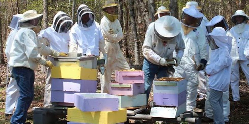 Beginning Beekeeper School - February 1, 8 and 15