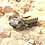 Thumbnail: FY004A 1/12 2.4G 6WD Rc Car Proportional Control US Army Military Truck Toy