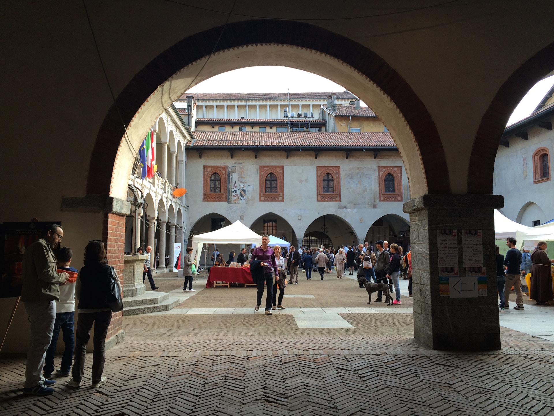 La Natura Esagera al Broletto di Novara - 11