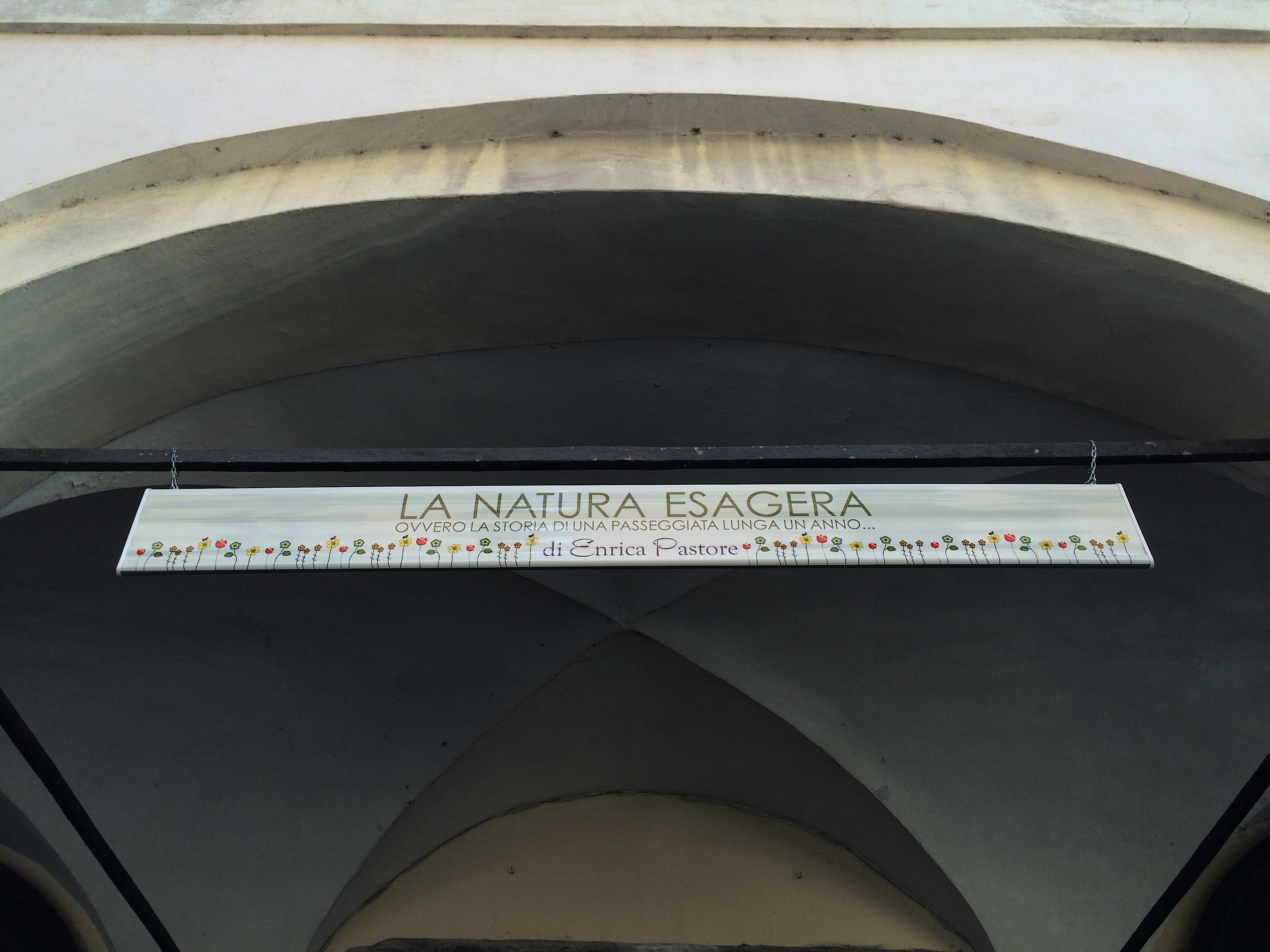 Mostra La natura Esagera Varallo S.