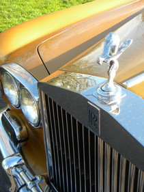 ROLLS-ROYCE SILVER SHADOW_Bronze_66.jpg