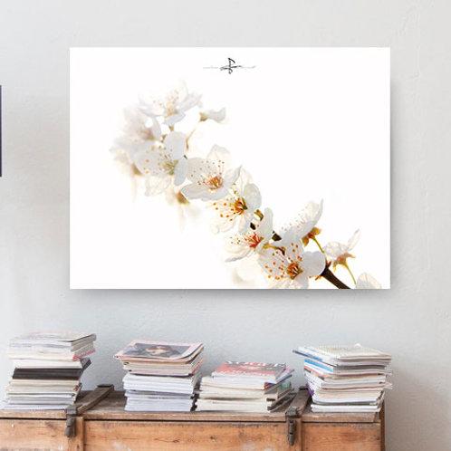 Poster Blütentraum 2