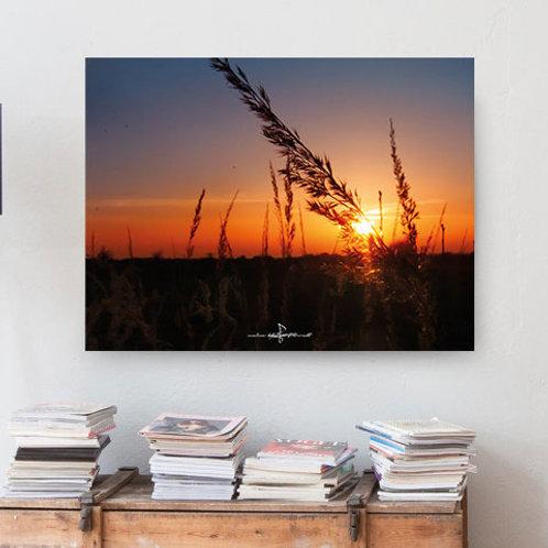 Poster Sonnenuntergang 2