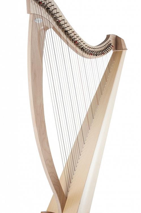 Salvi Titan 38strings Student Lever Harp