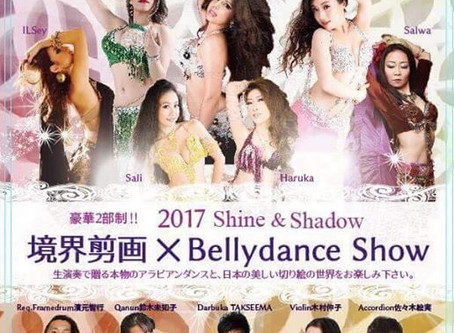 Shine & Shadow 2017 Mina Saleh Organizer !