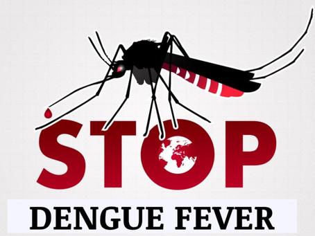 Putting the Brakes on Break-bone Fever (Dengue)