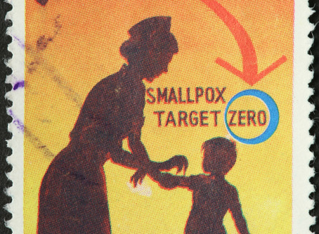 Smallpox Is Gone, but the Lessons Learned Live On
