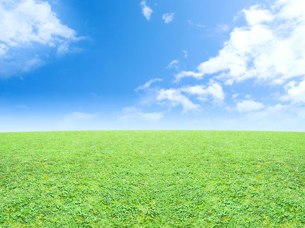 大自然のような健康な未来