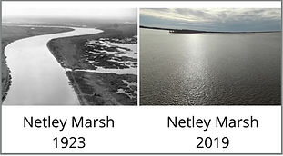Netley%20Marsh%20-%20Then%20and%20Now_ed