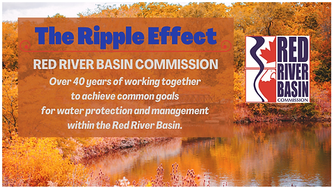 The Ripple Effect-Fall 2020 Newsletter.p