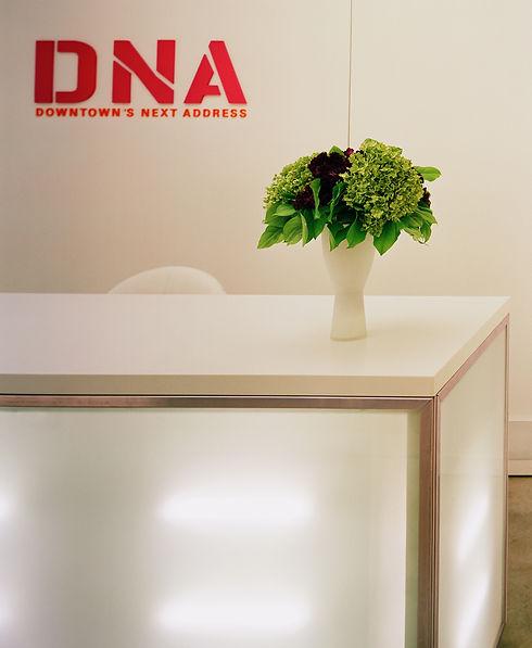 DNA2-RAD2.JPG