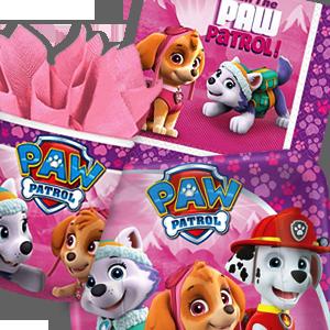 Paw Patrol Girl Birthday Party Supplies