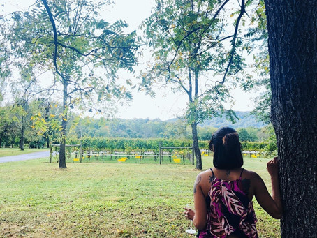 Escaping the City for a Winery Tour