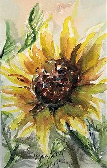 Sunflower Lynn Cheng Varga.jpeg