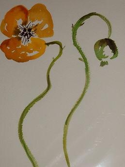 Yellow Poppies Louise Palagyi.JPG