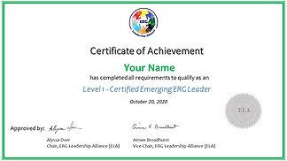 Certificate of Achievement -Level 1 Emer