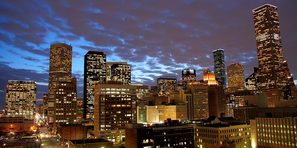 Houston, Texas: MSR - Lower Extremities - Level 1