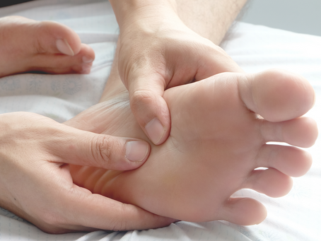 The Plantar Fascia – What Does it Do?