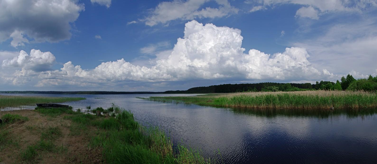 www.seliger24.ru