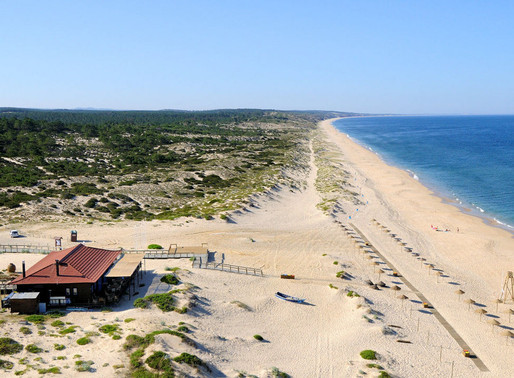 Comporta, Alentejo-The Coolest Region To Holiday In Portugal