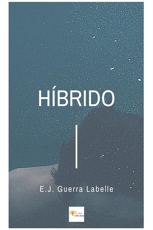 HÍBRIDO DE E.J. GUERRA LABELLE  (EDIÇÃO E-BOOK)
