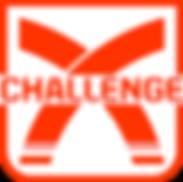 log challenge.png
