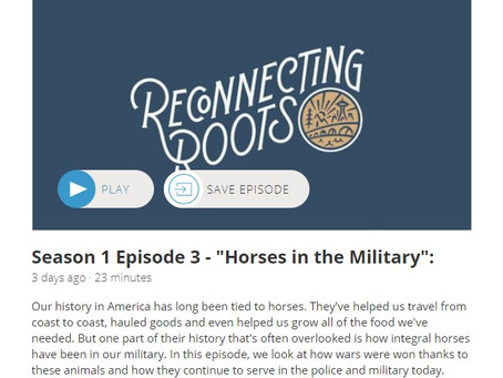 """Listen to Episode 3 of the """"Reconnecting Roots"""" podcast!"""