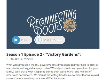 "Listen to Episode 2 of the ""Reconnecting Roots"" podcast!"