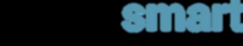 Logo TECHITSMART.png