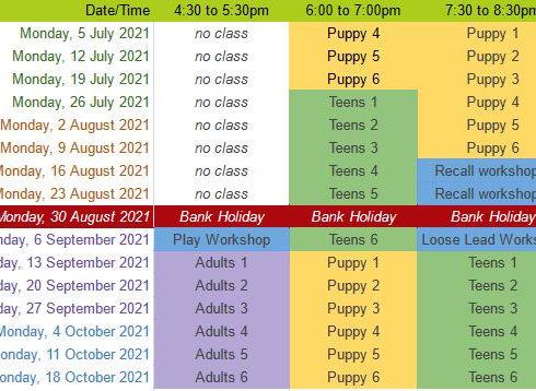 Puppy Classes Calendar