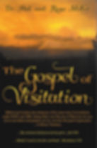 Book Cover  The Gospel of Visitation.jpg