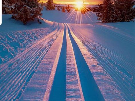 Skilanglauf mit Robby Lange am Heubethof im Allgäu / Skatingkurse und Klassik-kurse