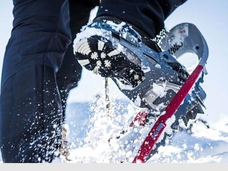 Schneeschuhwandern im Allgäu direkt vom Heubethof