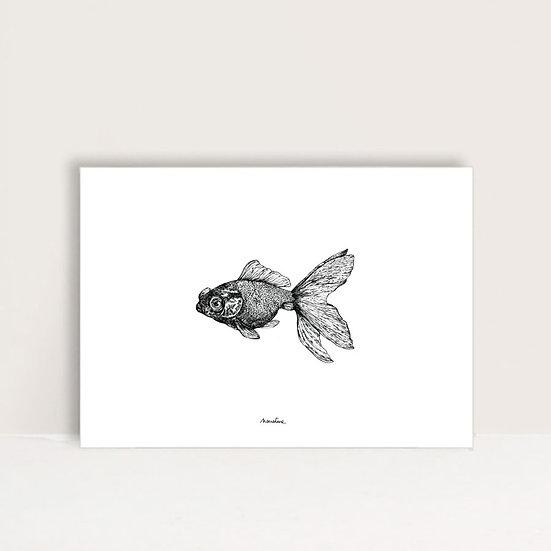 """Affiche """" Poppy le poisson """""""