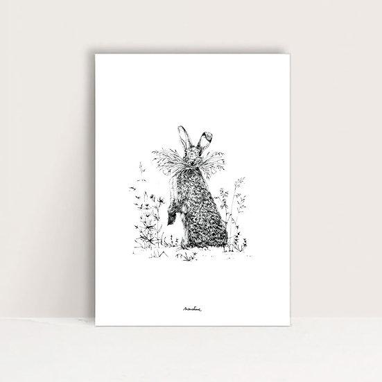 """Affiche """" Basile le lapin """""""