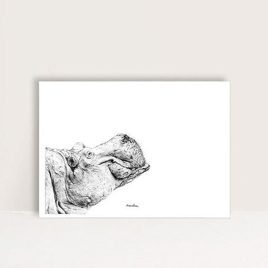 "Affiche "" Paulo l'hippopotame """