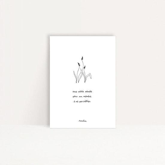 """Carte """" Petite pensée """""""