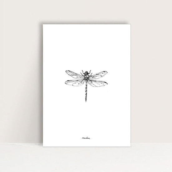 "Affiche "" Lili la libellule """