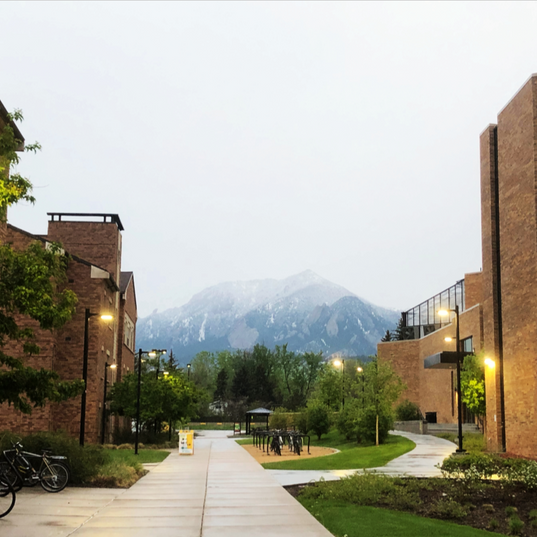 The University of Colorado - Bear Creek