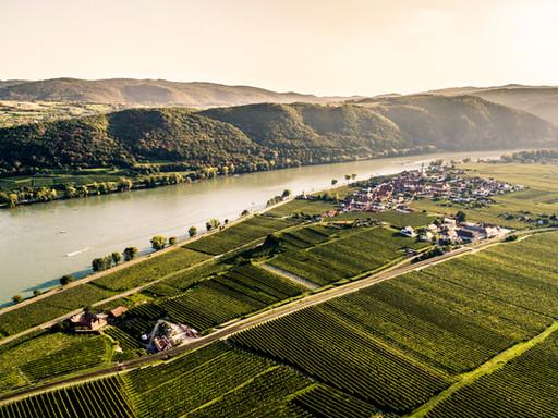 Weingut Gattinger - Wachau