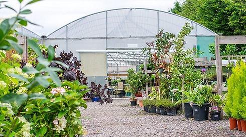 garden centre rear image