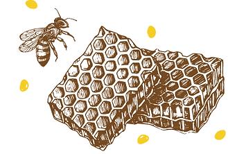 comb bee logo.png