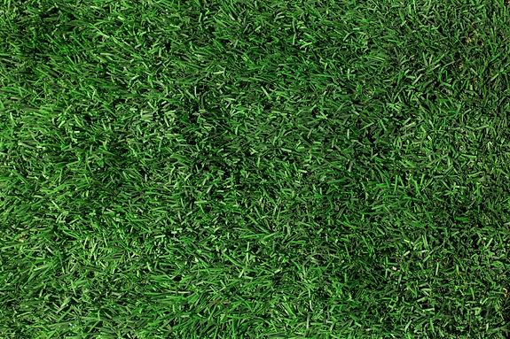 green-grass-texture-close-up.jpg