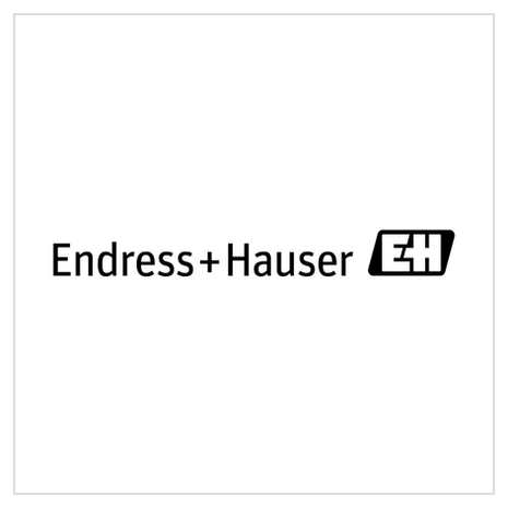 endress_hauser.png