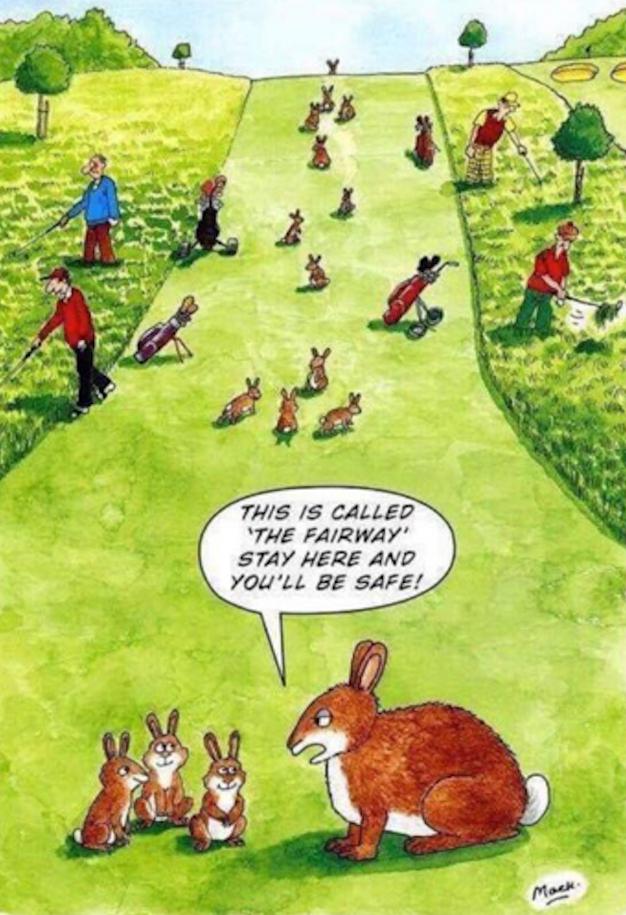 Freche Hasen wünschen frohe Ostern...