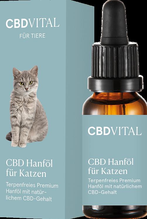 CBD Hanföl für Katzen