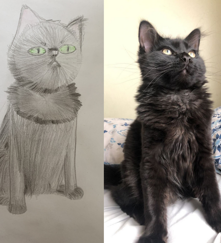 Kitty by Sandia Prep Student.png