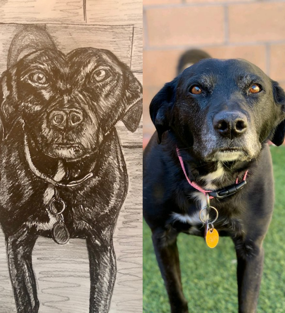Maggie by Sandia Prep Student.png