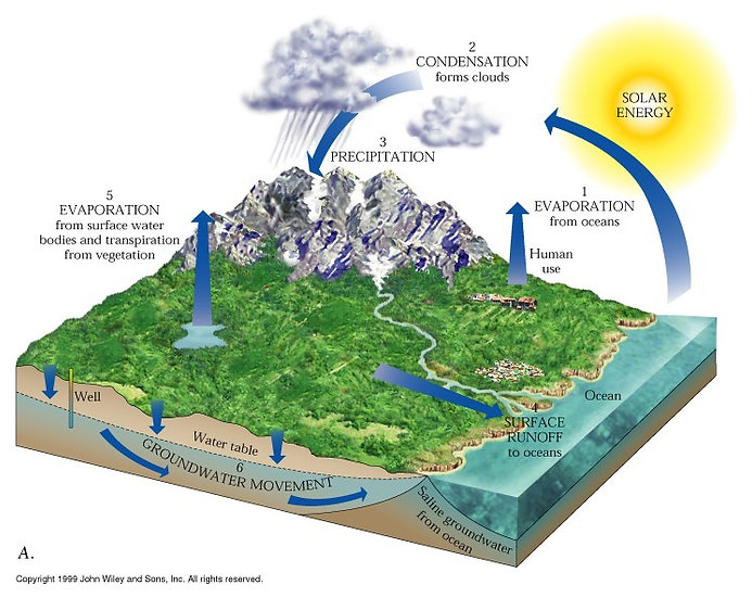 Image detailing the hydrologic cycle