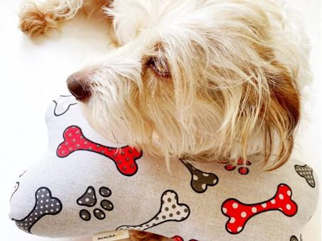 O Conforto Animal e a História da Almofada Osso - MimikoPets